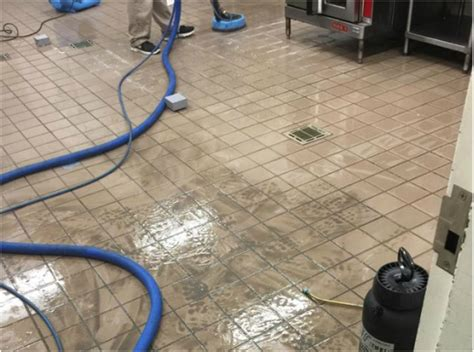 commercial services servicepro carpet cleaning