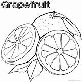Grapefruit Coloring Pages Printable sketch template