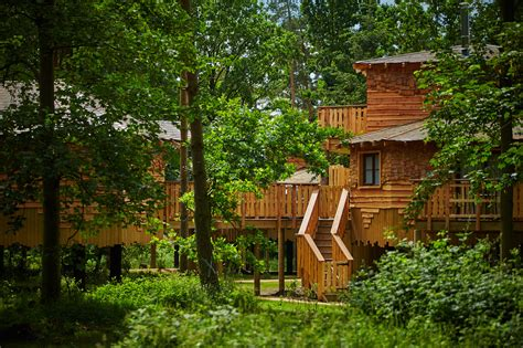 % Of Children Would Prefer A Treehouse Than A New Game