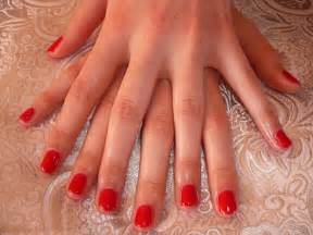 faux ongles le guide complet formation proth 233 siste