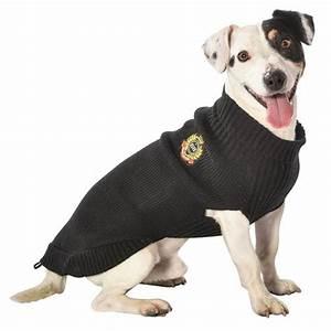 Video Pour Chien : pull pour chien pull chaussette pour chien ~ Medecine-chirurgie-esthetiques.com Avis de Voitures