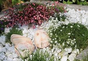 Blumen Für Steingarten : steingarten anlegen in 5 schritten obi anleitung ~ Markanthonyermac.com Haus und Dekorationen