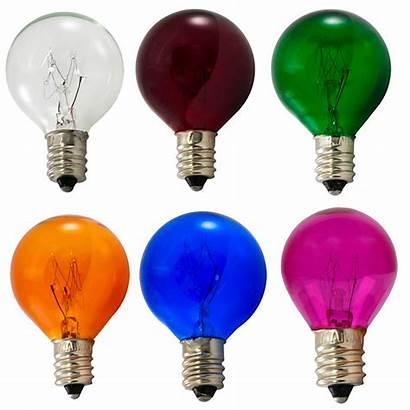 Bulb Multi Candelabra Base Bulbs Variety Pack