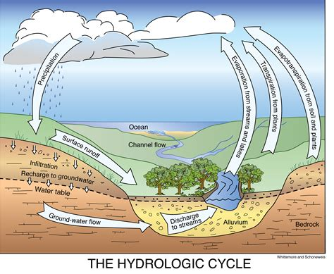 Water Cycle Images Hydrologic Cycle Images Search