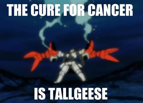 Gundam Memes - image 700805 gundam know your meme