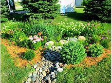 1000+ images about Raingardens on Pinterest