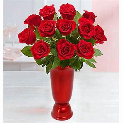Roses Vase Dozen Upgraded Premium
