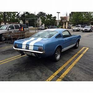 64 Mustang Fastback | 65 mustang fastback, Mustang fastback, Dream cars