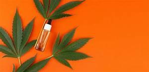 10 Best Cbd Massage Oils  Shopping And User Guide