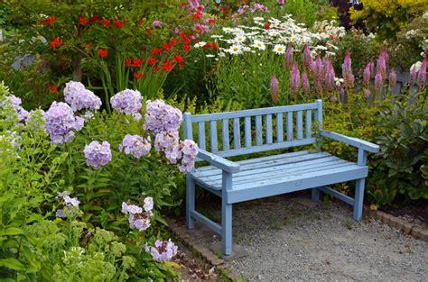 passt zu hortensien gute pflanznachbarn