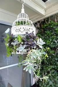 Oiseaux Decoration Exterieur : d co jardin diy id es originales et faciles avec objet de r cup jungle succulents d co ~ Melissatoandfro.com Idées de Décoration