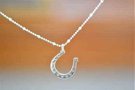 1000+ Ideas About Horseshoe Necklace On Pinterest Steam Gift Level Up Pre Order Gifts For Daughter In Law 2018 Thank You Senior Citizens Online Code Cute Little Your Girlfriend Friend Guide Deutsch