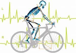 Rennrad Sitzposition Berechnen : optimale fahrrad sitzposition bike fitting f r rennrad ~ Themetempest.com Abrechnung