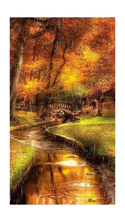 Autumn Scenery Fall Leaves Google Landscape River