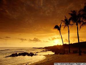 Sunset Beach Desktop Wallpapers