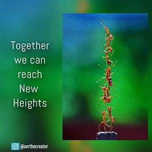The Creators Bl... Reach Heights Quotes
