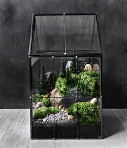 Bonsai Im Glas : greenhouse moss terrarium with landscape scene in geometric garten pinterest pflanzen ~ Eleganceandgraceweddings.com Haus und Dekorationen
