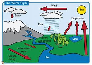 Teacher U0026 39 S Pet - The Water Cycle Poster