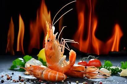 Shrimp Seafood Baltana Background Wallpapers