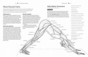 Tremendous Anatomy Coloring Sheets Picture Inspirations