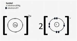 Electron Dot Diagram Of Fluorine : magnesium fluoride facts formula properties uses ~ A.2002-acura-tl-radio.info Haus und Dekorationen