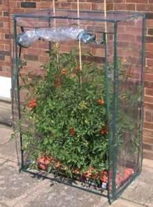Tomatenzelt Selber Bauen : tomatenzelt kaufen oder mit bauanleitung selber bauen gew chshaus profi ~ Eleganceandgraceweddings.com Haus und Dekorationen