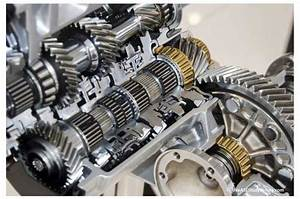 Transaxle Final Drive Gears And Chain Assembly