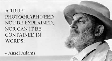 Favorite Photography Quotes (updated)
