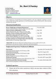 dr ravi s pandey resume for assistant professor research With sample resume for experienced assistant professor in engineering college