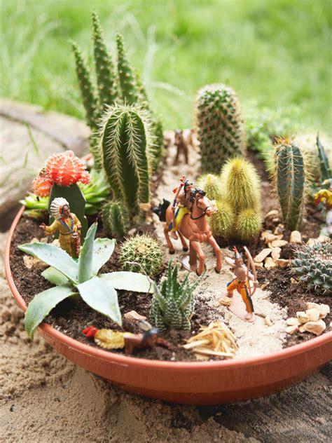 succulent container garden hgtv