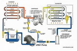 Refrigeration  Diagram Refrigeration Circuit
