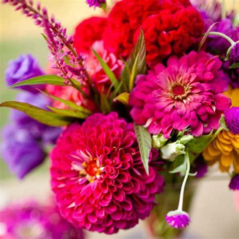 top   september flowers ideas  pinterest