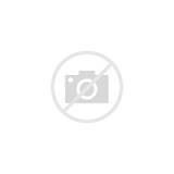 Mandala Cat Coloring Animal Vector Illustration Flowers Circle sketch template