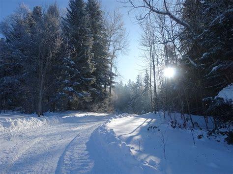 Winter Wonderland Landscape · Free Photo On Pixabay