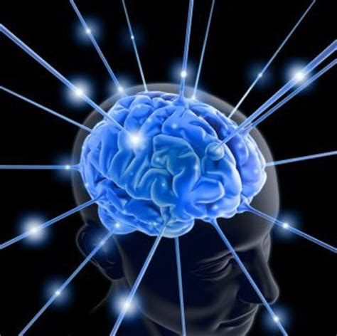 od theory psychoanalytical theory organisation development