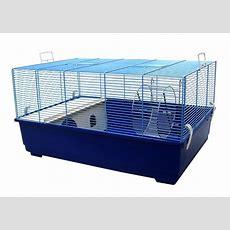 Rattenkäfig Günstig Kaufen ++ Test ++ Testsieger
