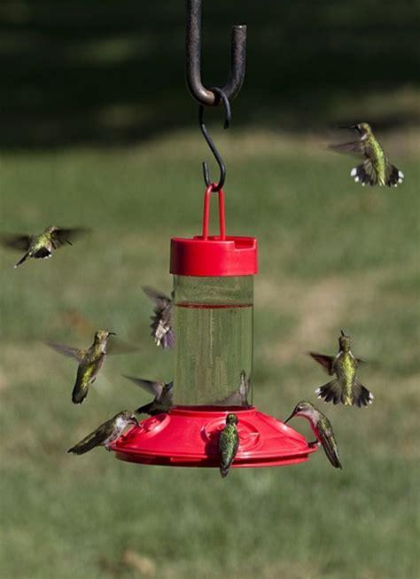 vogeltränke selber bauen vogelhaus selber bauen diy bauanleitung
