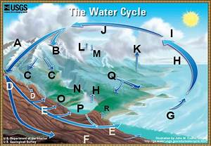 The Water Cycle  Place Where The Proper Terms Go