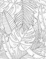 Tropical Coloring Leaves Leaf Audrey Geometric Drawing Flower Chenal Audreychenal sketch template