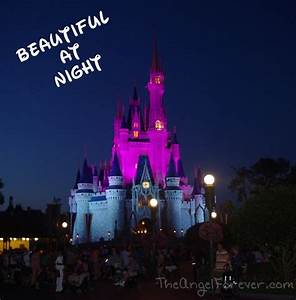 Walt Disney World Magic at Night | The Angel Forever