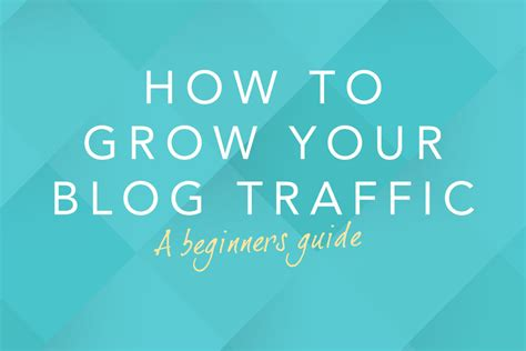 the beginner s guide to growing your traffic