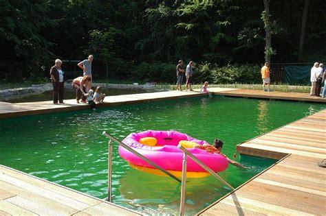 naturpool oder schwimmteich schwimmteich selber bauen tipps und informationen pina design 174