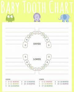 Teething Isn U0026 39 T For Babies Gift Basket