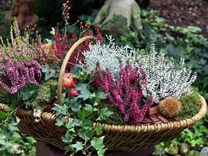 Herbstdeko Für Den Garten : heide pfiffige deko ideen f r den herbst mein sch ner garten ~ Orissabook.com Haus und Dekorationen