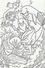 Coloring Mermaid Dolphins Disney Arielle Princess Adult Ausmalbilder Meerjungfrau Kleine Printable Cove Coral Malvorlagen Cartoon sketch template