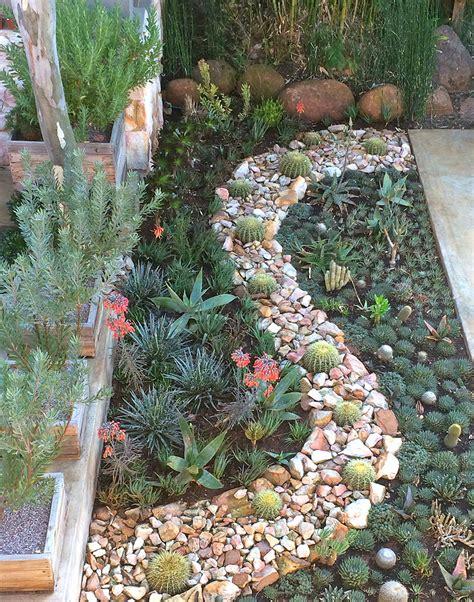 water wise gardens succulent gardens apple landscape jhb cc apple landscape jhb cc
