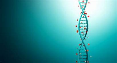 Biology Science Medical Genetics Medicine Chemistry Abstract
