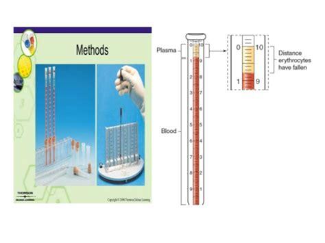 Blood Test Sed Rate Erythrocyte Sedimentation Rate