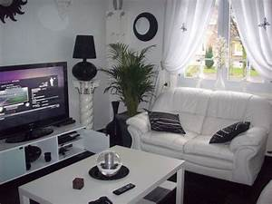 idee deco salon noir et blanc With idee deco salon blanc