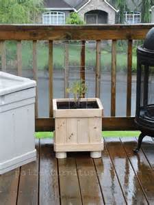 DIY Planter Boxes From Pallets
